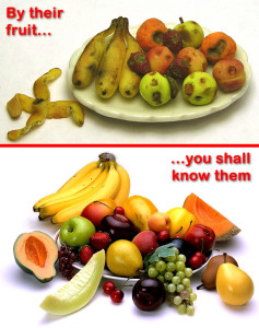 By their fruit you shall know htem