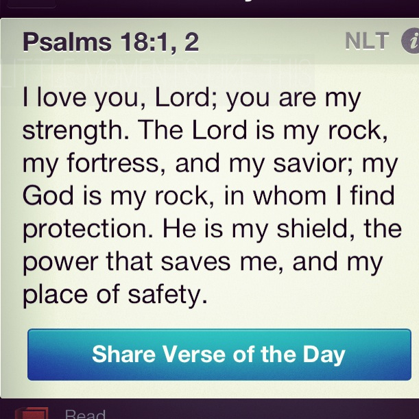 Psalm 18:1,2 The Lord is my Rock